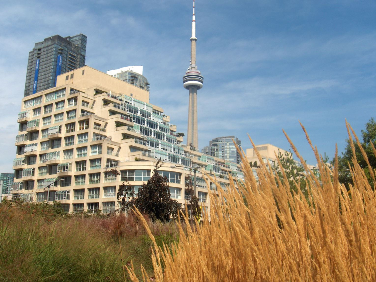 toronto-waterfront-nature-trails